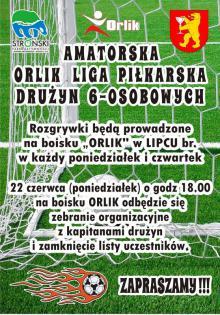 Plakat Orlik Liga 2015.jpeg