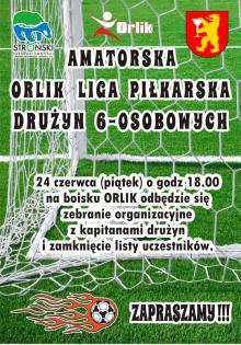 Orlik Liga 2016.jpeg